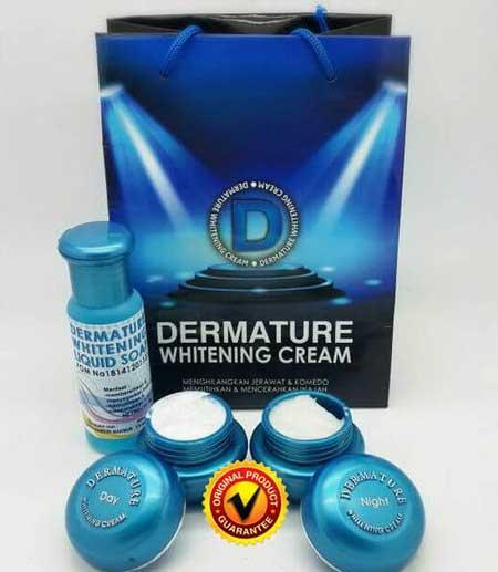Krim Pemutih Wajah Yang Aman Dan Bersertifikat Bpom - Dermature Whitening Cream