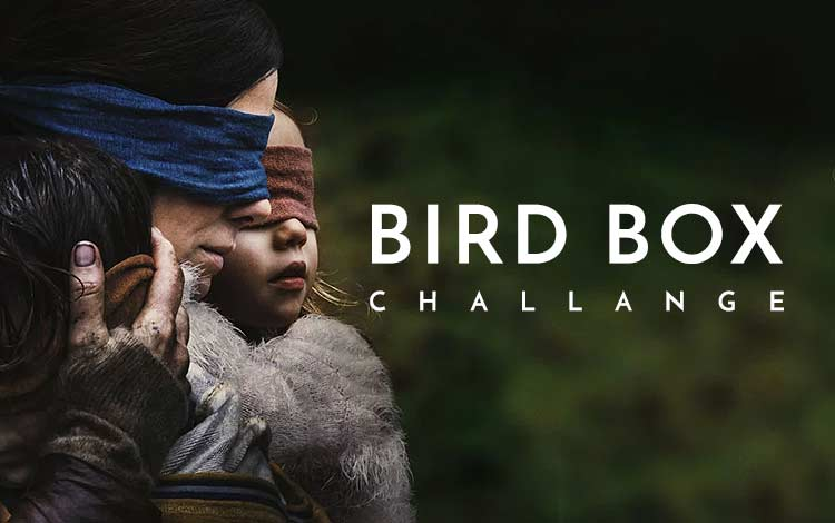 Bird Box Challange