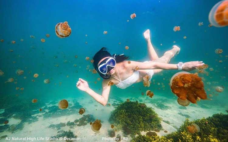 Tempat Wisata Unik Yang Ada Di Indonesia - Danau Kakaban, Kalimantan Timur