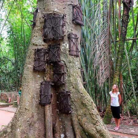 Tempat Wisata Unik Yang Ada Di Indonesia - Kambira (Kuburan Bayi), Toraja