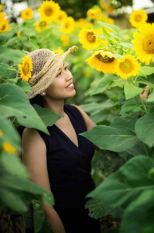 Tempat Wisata Terbaru Di Bali - Sunflower Garden