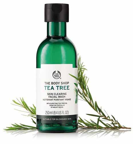 Rekomendasi Sabun Wajah Yang Bagus Untuk Kulit Berminyak - The Body Shop Tea Tree Skin Clearing Facial Wash