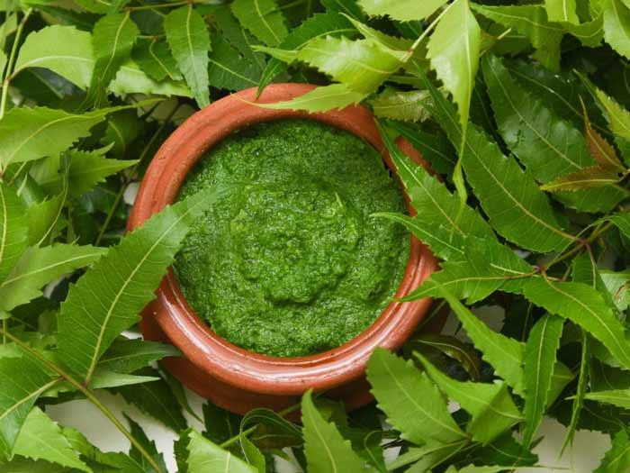 Cara Ampuh Mengurangi Rambut Rontok Secara Alami - daun neem