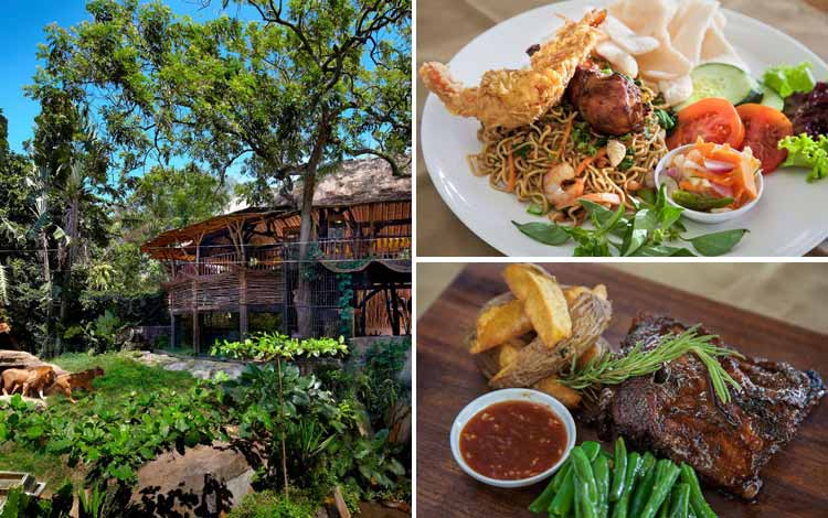 Tempat Makan atau Restoran Dengan Nuansa Alam Di Bali - Wana Restaurant