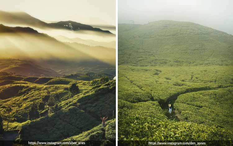 Tempat Wisata Terbaik di Bogor Yang Instagramable - Desa Wisata Malasari