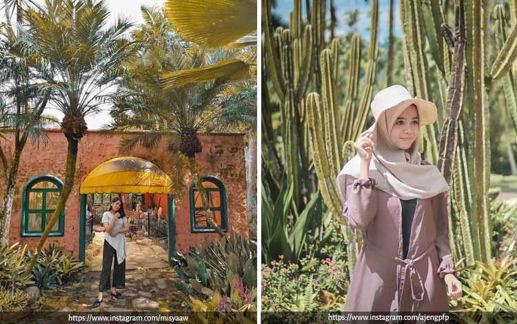 Tempat Wisata Terbaik di Bogor Yang Instagramable - Taman Bunga Nusantara Puncak Cianjur