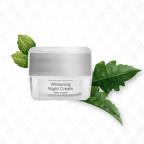 Aneka Produk Ms Glow Terbaru Lengkap Dengan Harganya - Ms Glow Whitening Night Cream