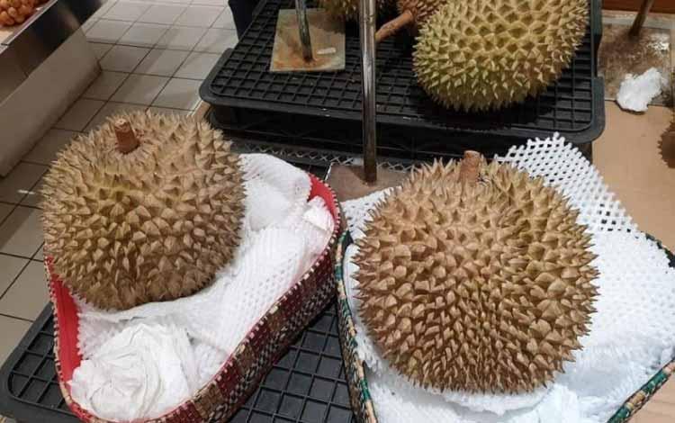 Durian Terenak dan Termahal Di Dunia - Durian J-Queen