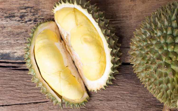 Durian Terenak dan Termahal Di Dunia - Durian Kanyao