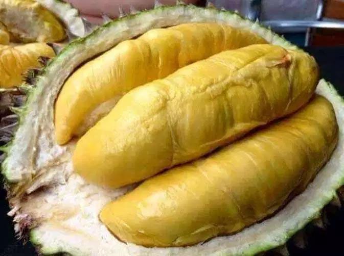 Durian Terenak dan Termahal Di Dunia - Durian Montong