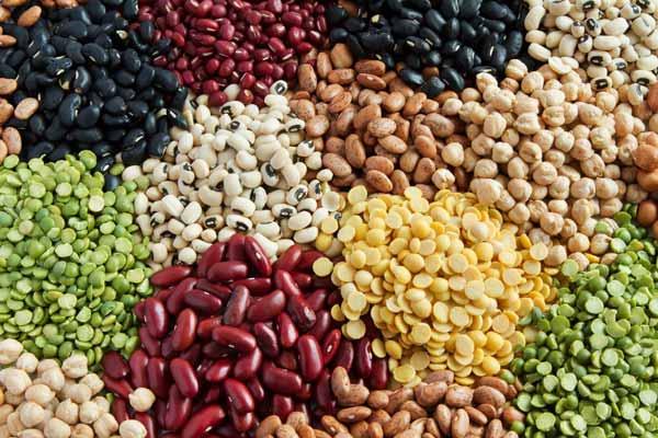 Rekomendasi Makanan Sehat Untuk Ibu Hamil - kacang-kacangan