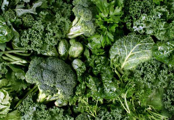 Rekomendasi Makanan Sehat Untuk Ibu Hamil - Brokoli dan sayuran hijau lainnya