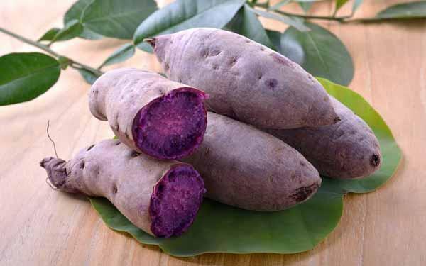 Rekomendasi Makanan Sehat Untuk Ibu Hamil - ubi