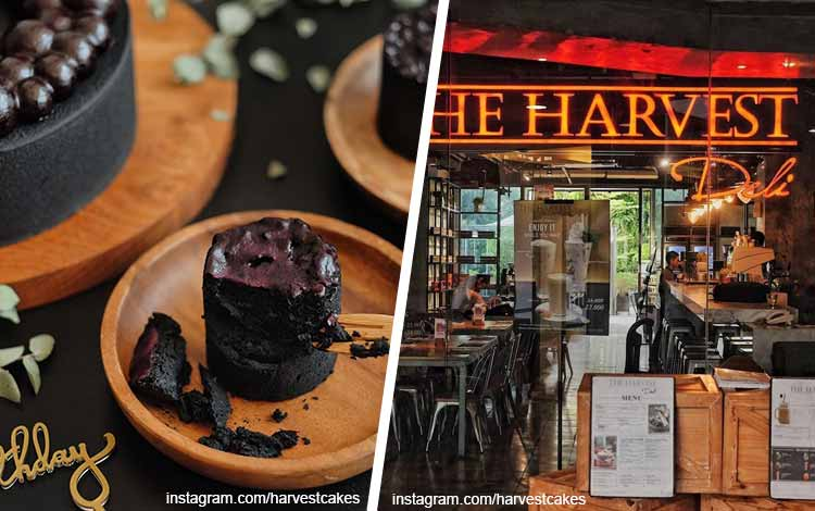 Toko kue terbaik di Jakarta - The Harvest