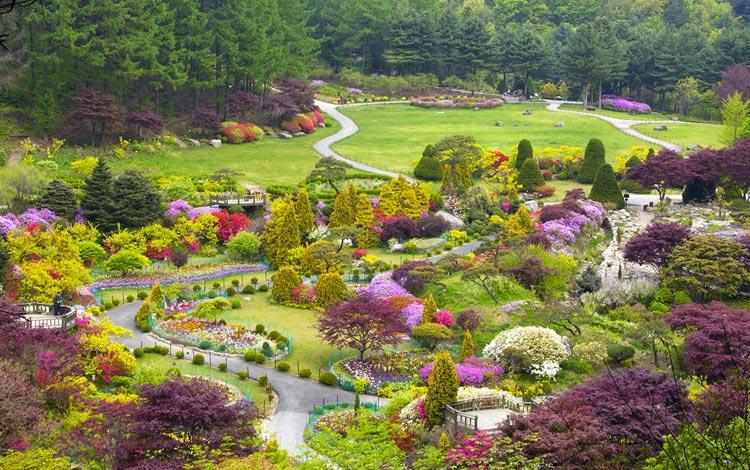 Tempat wisata terpopuler di Korea Selatan - The Garden of Morning Calm