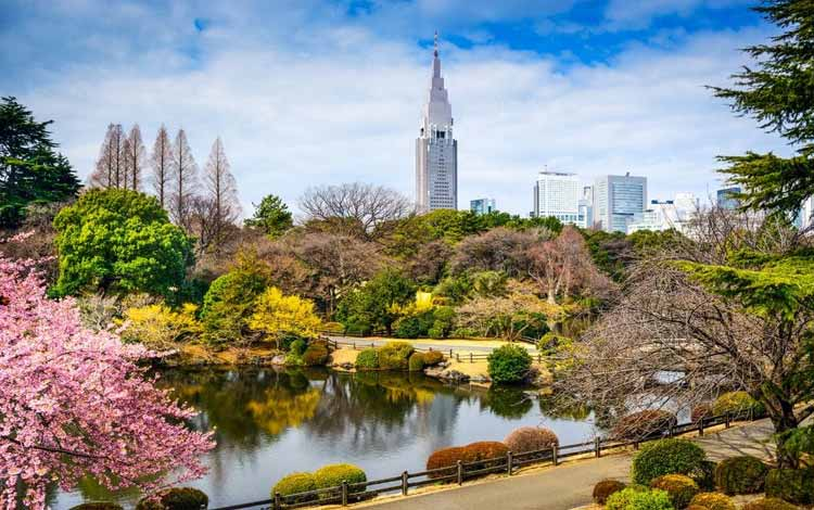 Wisata Terfavorit Di Jepang - Shinjuku Gyoen