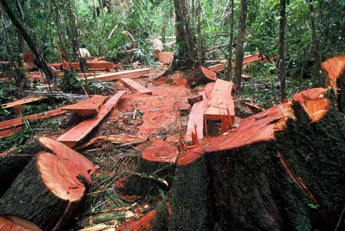 Deretan Cap Buruk Indonesia Di Mata Dunia