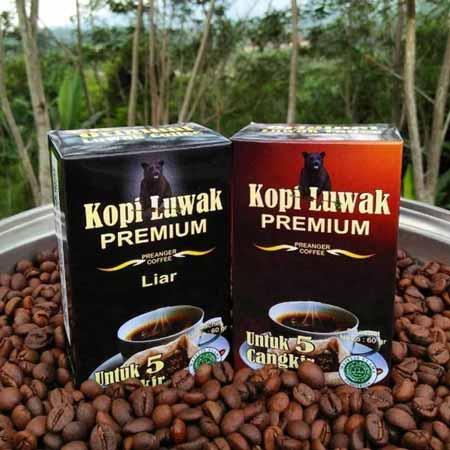 Berbagai-Jenis-Kopi-Indonesia-Berkualitas-Ekspor-Kopi-Luwak