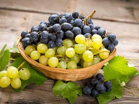 Berbgai-Jenis-Buah-Berry-Beserta-Manfaatnya-Anggur