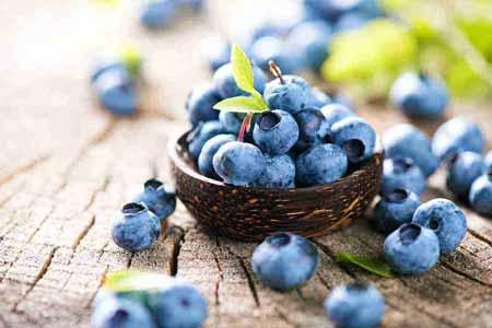 Berbgai-Jenis-Buah-Berry-Beserta-Manfaatnya-Blueberry