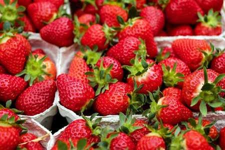 Berbgai-Jenis-Buah-Berry-Beserta-Manfaatnya-Strawberry