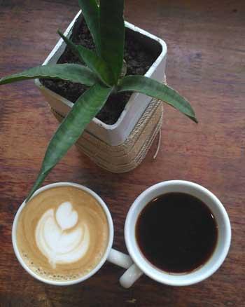 Kedai Kopi Terbaik Di Medan - Mokka Coffee and Eats