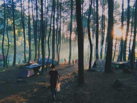 Tempat Camping Terbaik Di Bogor - Bumi Perkemahan Suaka Elang