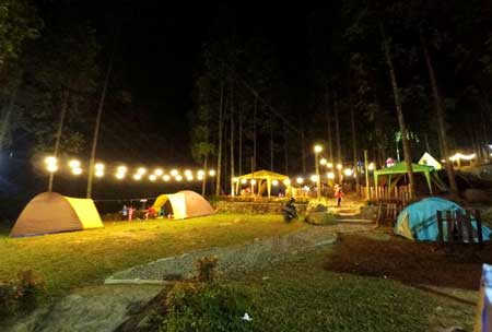 Tempat Camping Terbaik Di Bogor - Perkemahan Citamiang