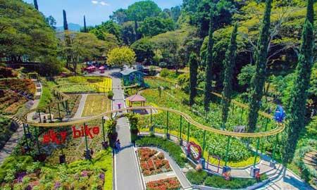 Taman Bunga Terindah Di Indonesia - Taman Bunga Selecta