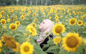 Taman bunga terindah di Indonesia