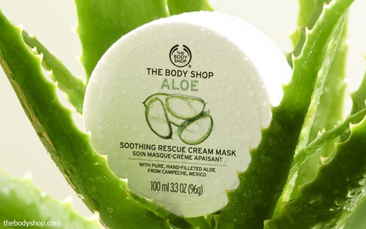 10 Masker Aloe Vera Yang Bagus Untuk Kulit Wajah Bersih Dan Mulus