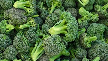 Tumbuhan Yang Mampu Meningkatkan Daya Tahan Tubuh - Brokoli