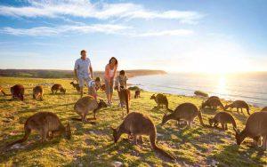 Tempat Wisata Terbaik Di Australia