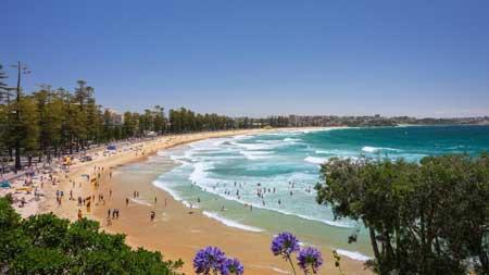 Tempat Wisata Terbaik Di Australia - Manly Beach