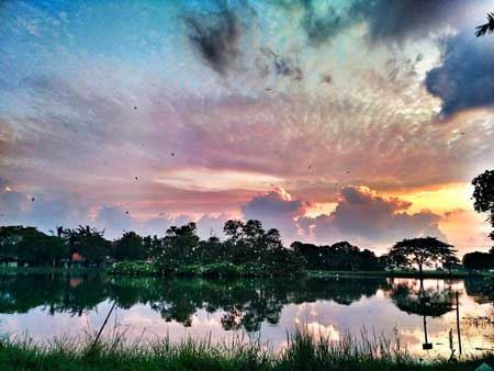 Tempat-Wisata-Terbaik-Di-Subang-Taman-Burung-Sukamandi