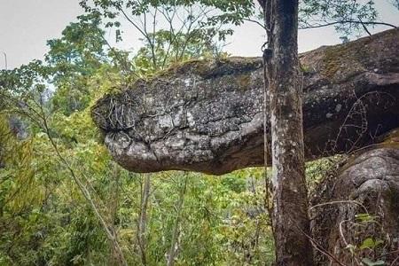 Penemuan Batu Mirip Ular Raksasa di Thailand