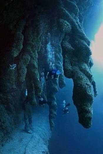 10 Destinasi Dengan Pemandangan Bawah Laut Terindah Di Dunia - The Great Blue Hole
