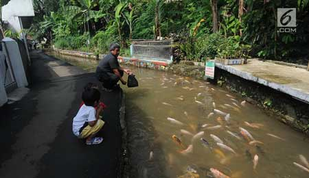 6 Kampung di Indonesia Berhasil Mengubah Selokan Kotor - Kampung Naringgul, Bogor