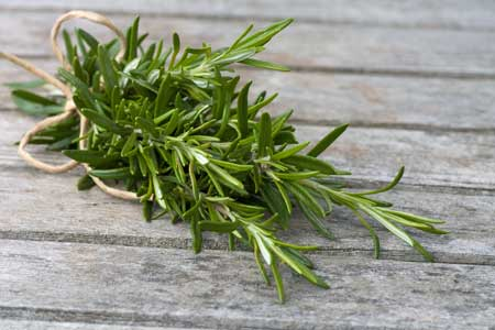 Aroma Yang Dapat Membuat Bahagia Dan Meredakan Stress - Rosemary