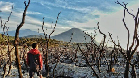 Gunung Di Indonesia Dengan Pemandangan Yang Indah - Gunung Papandayan