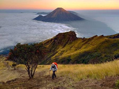 Gunung Di Indonesia Dengan Pemandangan Yang Indah - Gunung Sumbing