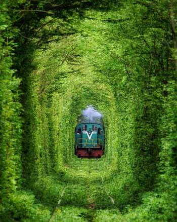 Lintasan Kereta Api Dengan Pemandangan Paling Indah Di Dunia - Tunnel of Love
