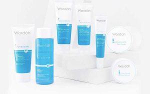 Merk Kosmetik Yang Aman Untuk Kulit Berjerawat