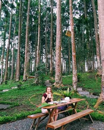 Tempat Wisata Di Purwokerto Terbaru Dan Paling Hits - Baturraden Adventure Forest