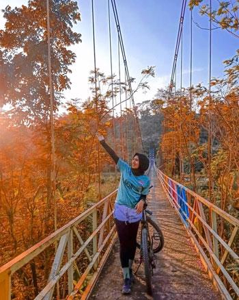 Tempat Wisata Tegal Terbaru Yang Menarik Untuk Dikunjungi - Jembatan Gantung Danawarih