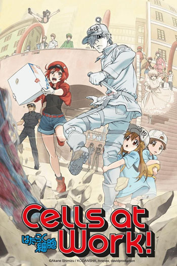 Daftar Anime Komedi Terlucu - Cells at Work!