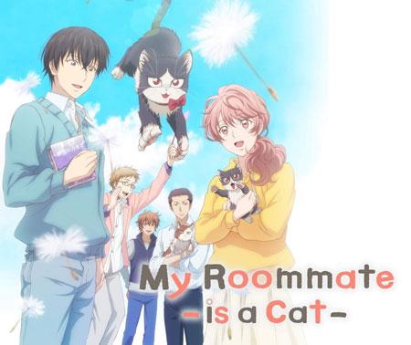 Daftar Anime Komedi Terlucu - My Roommate is a Cat