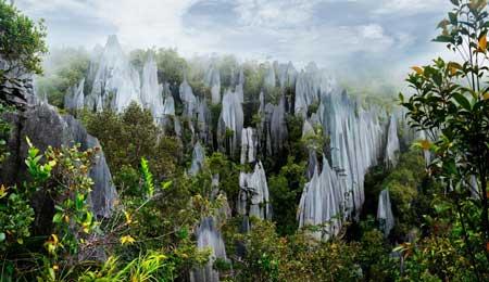 Tempat Wisata Malaysia Terpopuler Dan Instagramable - Gunung Mulu National Park