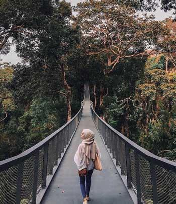 Tempat Wisata Malaysia Terpopuler Dan Instagramable - The Habitat Penang Hill