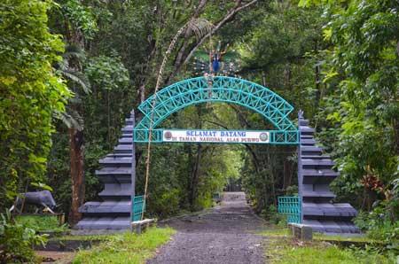 Tempat Wisata Paling Angker Di Indonesia - Taman Nasional Alas Purwo